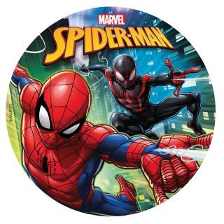 placa spiderman