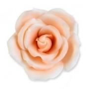 rosas açucar laranja