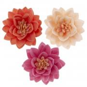 flor lotus obreia
