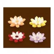 miminhos flores