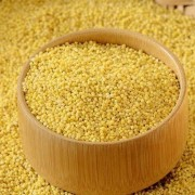 milho painço millet