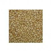 pinhao miudo 950un/kg